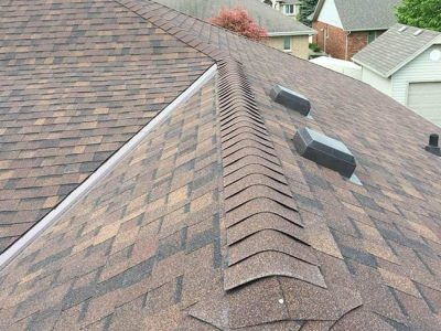 Roof Shingle Options